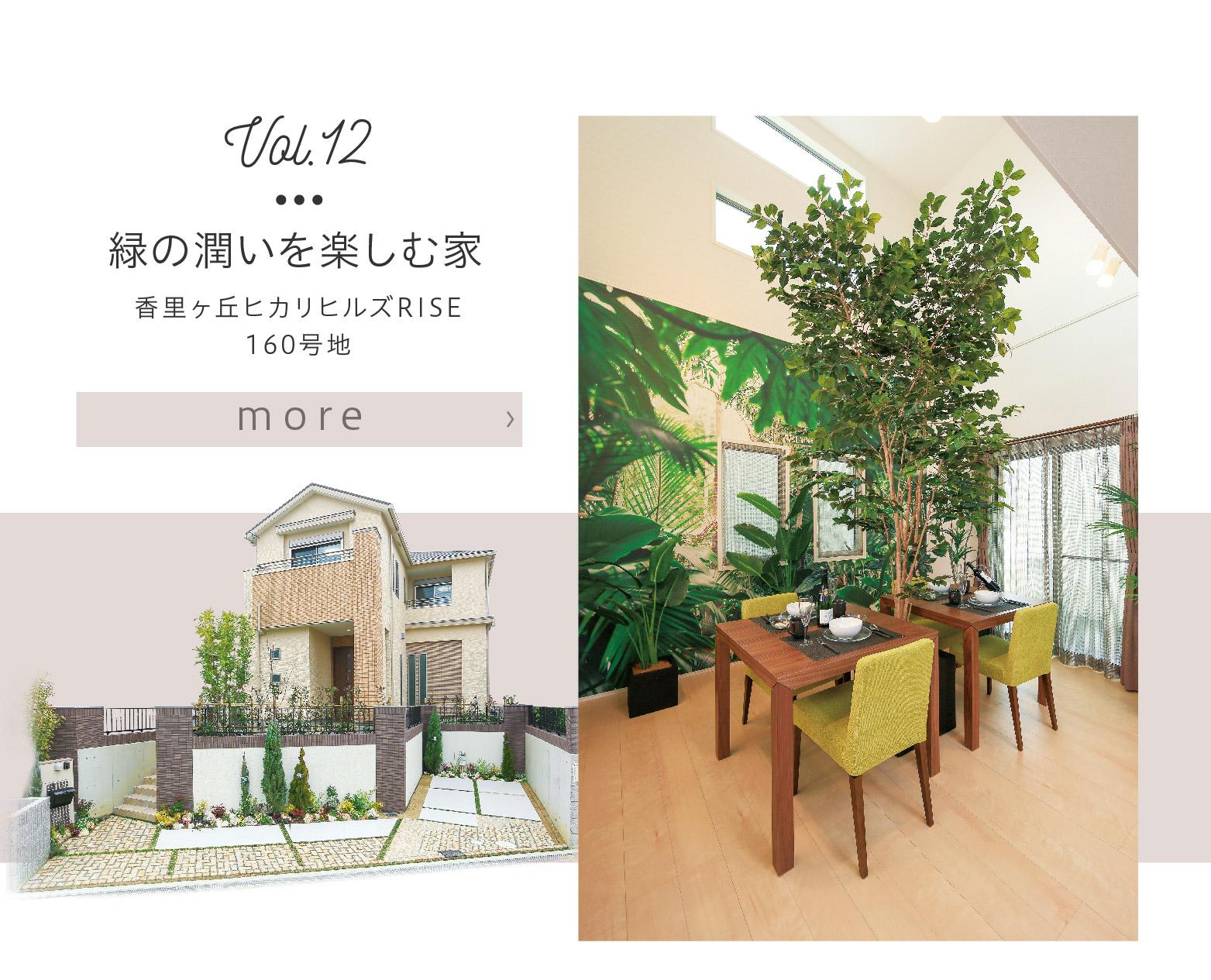 【香里ヶ丘ヒカリヒルズRISE 160号地】モデルハウスを見る
